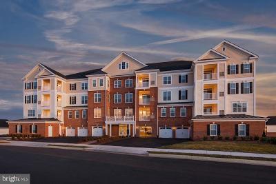 Ashburn Condo Under Contract: 21025 Rocky Knoll Square #206
