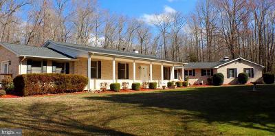 Port Tobacco Single Family Home For Sale: 8740 Locust Grove Drive