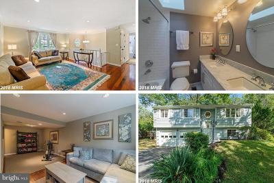 Burke Single Family Home For Sale: 10820 Split Oak Lane