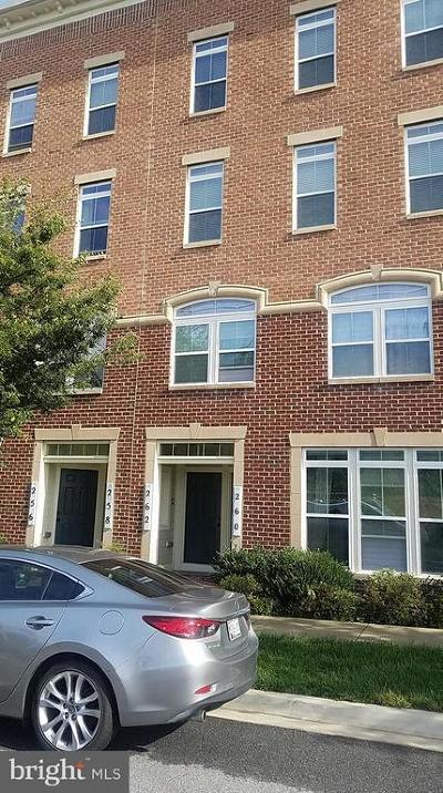Gaithersburg Condo For Sale: 262 Urban Avenue