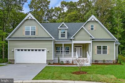 Ocean City Single Family Home For Sale: 9817 Winding Trl Drive