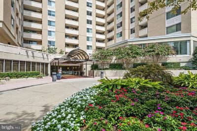 Chevy Chase Condo For Sale: 4601 Park Avenue #1404-D