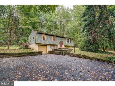 Honey Brook Single Family Home Under Contract: 222 Icedale Road