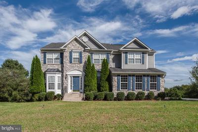 Stafford Single Family Home For Sale: 29 Whirlaway Drive