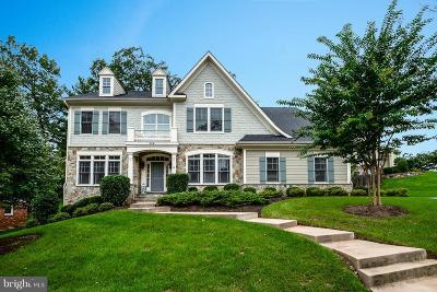 Vienna Single Family Home For Sale: 308 John Marshall Drive NE