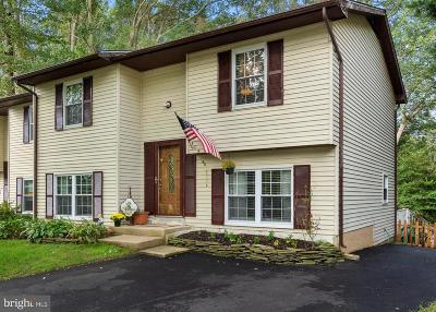 Annapolis Single Family Home For Sale: 404 Master Derby Court