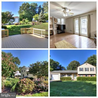 Fairfax Single Family Home For Sale: 9381 Tartan View Drive