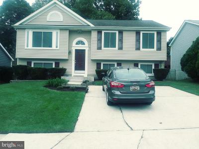 Owings Mills Single Family Home For Sale: 309 Lantana Drive