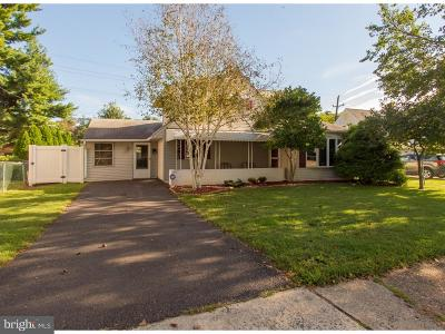 Levittown Single Family Home For Sale: 360 Holly Drive