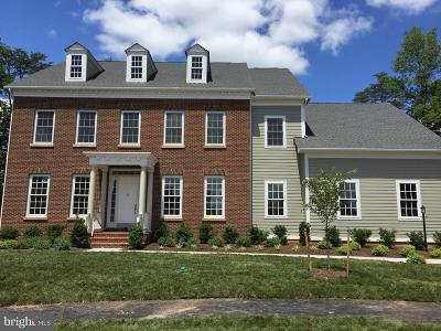 Ashburn Single Family Home For Sale: 41845 Paddock Gate Place
