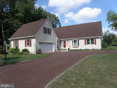 Millsboro Single Family Home For Sale: 23125 Lakeview Drive