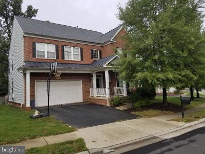 Ashburn Single Family Home Under Contract: 22891 Courtland Park Drive