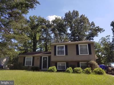 Waldorf Single Family Home For Sale: 4428 Quillen Circle
