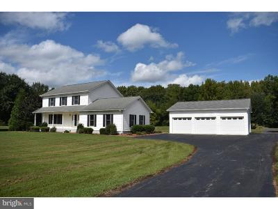 Townsend Single Family Home For Sale: 223 Eagles Nest Landing Road