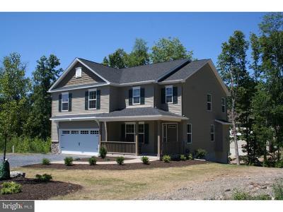 Springfield Single Family Home For Sale: 136 Bankos Lane