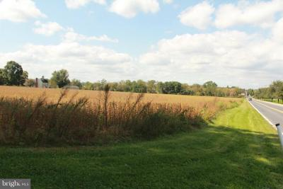 Manheim Residential Lots & Land Under Contract: 256 Fruitville Pike