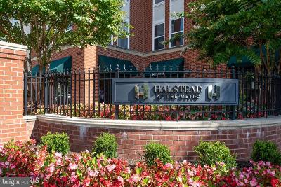 Fairfax Condo For Sale: 2655 Prosperity Avenue #332