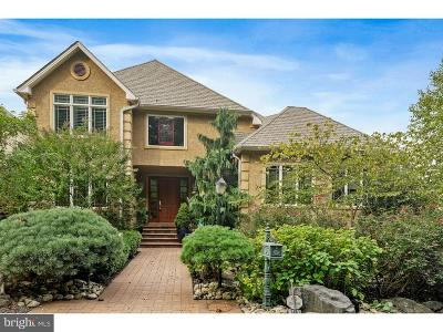 Gladwyne Single Family Home For Sale: 1491 Wesleys Run