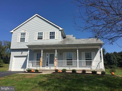 Gilbertsville Single Family Home For Sale: 201 Hawthorne Avenue