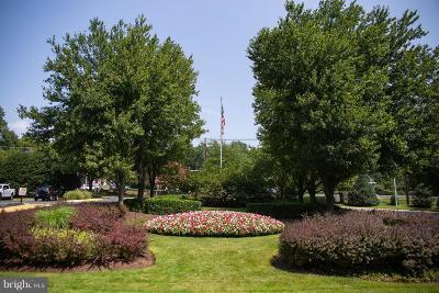 Rockville Condo For Sale: 10500 Rockville Pike #1217