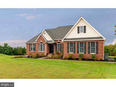 Single Family Home For Sale: 3980 Parestis Road