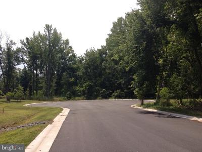 Saint Michaels Residential Lots & Land For Sale: 109 Chesapeake Avenue