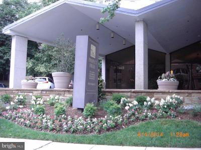 Arlington Rental For Rent: 1200 Nash Street N #265