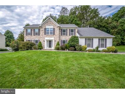 Newark Single Family Home For Sale: 383 Mourning Dove Drive