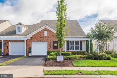 Ashburn Single Family Home For Sale: 44486 Maltese Falcon Square