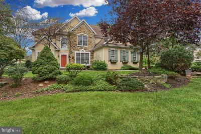 Lititz Single Family Home For Sale: 361 N Farm Drive