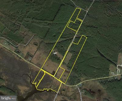 Dorchester County Residential Lots & Land For Sale: 2500 Beech Ground Road