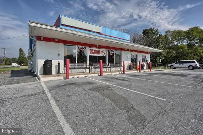 Harrisburg Single Family Home For Sale: 7710 Allentown Boulevard