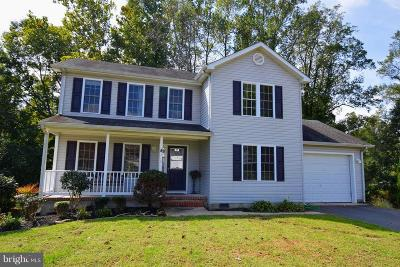 Centreville  Single Family Home For Sale: 218 Autumn Lane