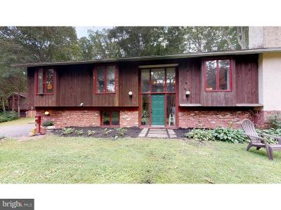 Bucks County Single Family Home For Sale: 116 Ridge Valley Road