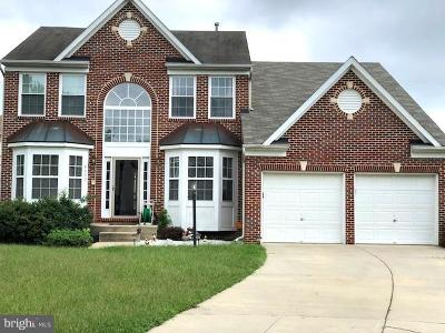 Waldorf Single Family Home For Sale: 4602 Angushire Court