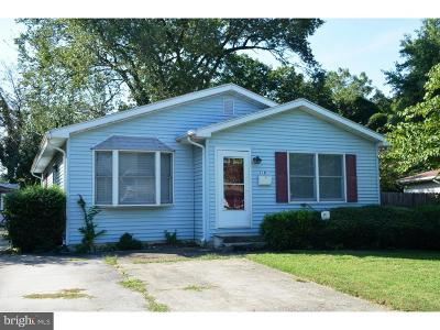 Dover Single Family Home For Sale: 216 Ann Avenue