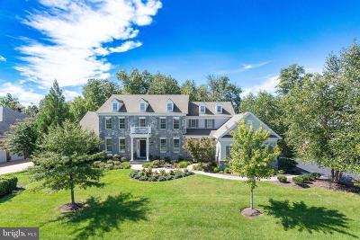 Loudoun County Single Family Home For Sale: 20145 Black Diamond Place