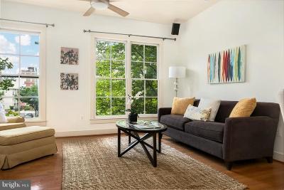 Hyattsville Rental For Rent: 4412 Longfellow Street