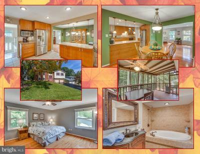 Burke Single Family Home For Sale: 9506 Shipwright Drive
