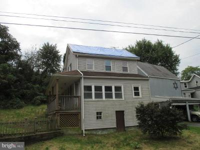 Columbia Single Family Home For Sale: 2521 Ironville Pike