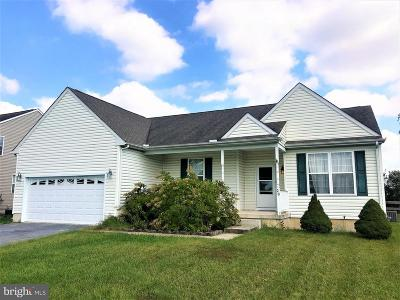 Milford Single Family Home For Sale: 20 Meadow Lark Drive