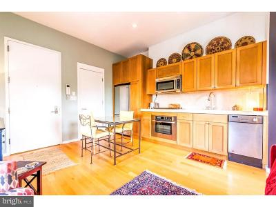 University City Condo For Sale: 4200 Pine Street #501