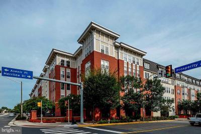 Fairfax Condo For Sale: 2655 Prosperity Avenue #115