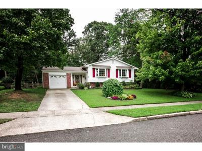 Pitman Single Family Home For Sale: 620 Howard Avenue