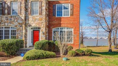 Prince Georges County Single Family Home For Sale: 8205 Waterside Court