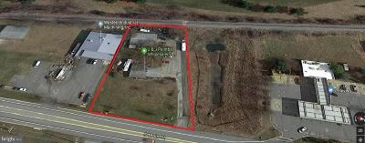 Carroll County Single Family Home For Sale: 135 Hanover Pike