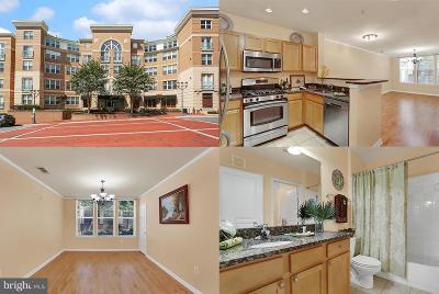 Reston, Herndon Condo For Sale: 12000 Market Street #124