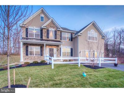 Coatesville Single Family Home For Sale: 1012 Woodruff Road