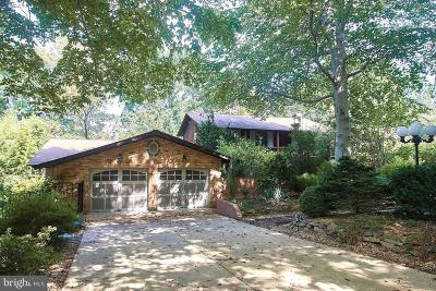 McLean Single Family Home For Sale: 1707 James Payne Circle