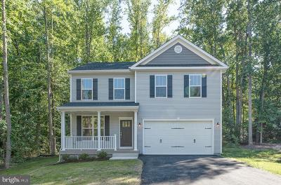 Single Family Home For Sale: 11707 Bleasdell Drive